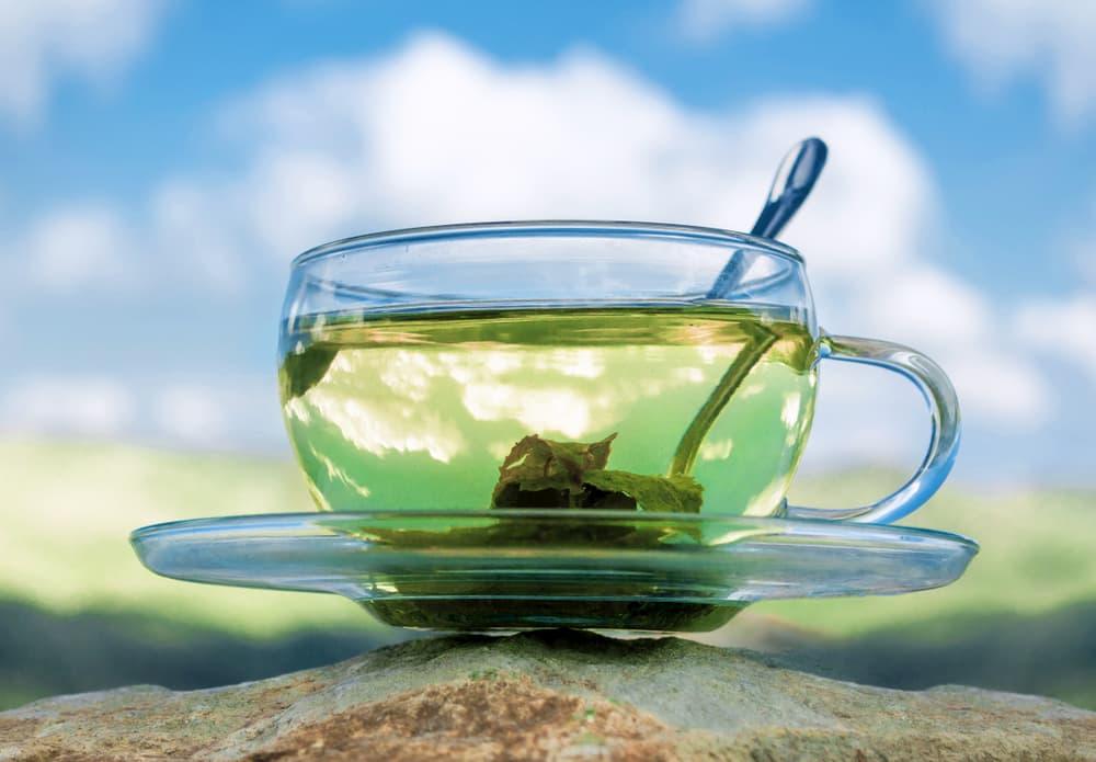 bien préparer le thé vert